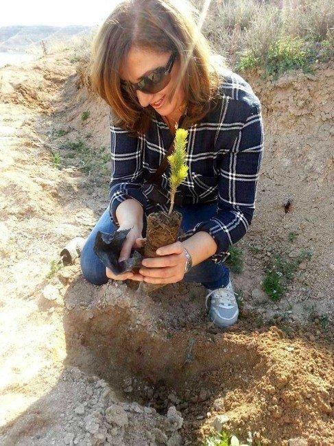 Gençler Ve Anneler Fidanları Toprakla Buluşturdu