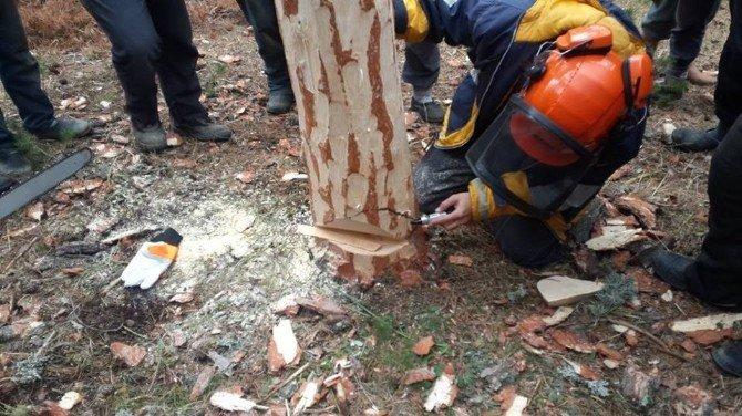 Orman Köylüsüne Akbo Eğitimi Verildi