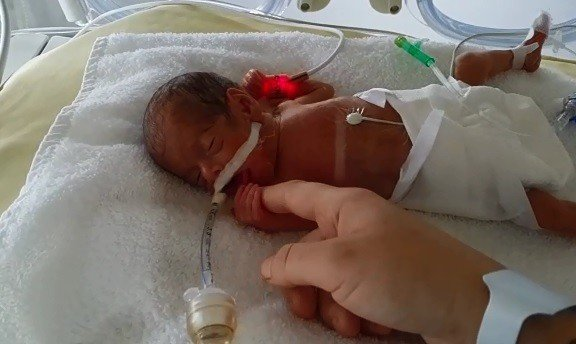 Parmak Bebekler Hayata Tutundu