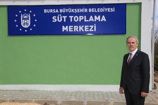 Bursa Büyükşehir Belediyesi'nden Süt Üreticisine Destek