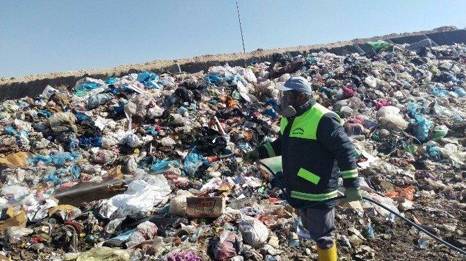 Karaman Belediyesinin Haşere İle Mücadele Çalışması