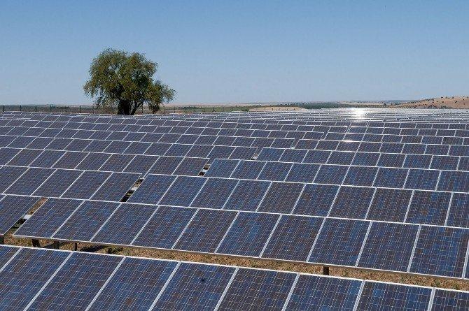 Kayseri Şeker, Güneş Enerji Yatırımı İle 2 Milyon Kwh Elektrik Üretecek