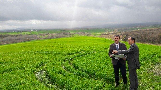 Malkara İlçe Tarım Ekibi Arazi Kontrolüne Çıktı