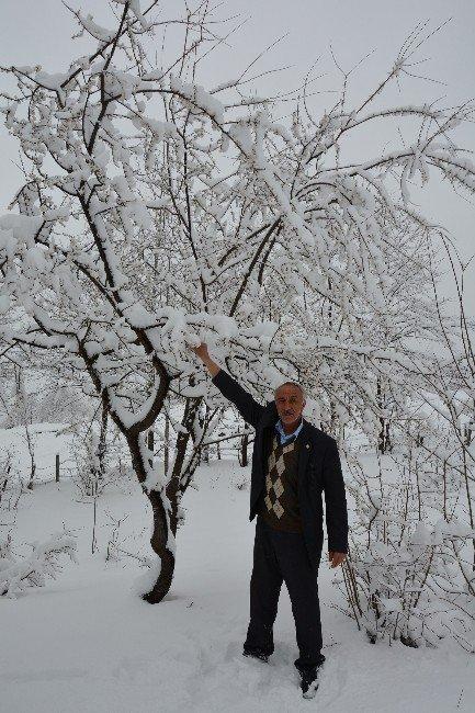 Baharı Beklerken Kar Yağdı