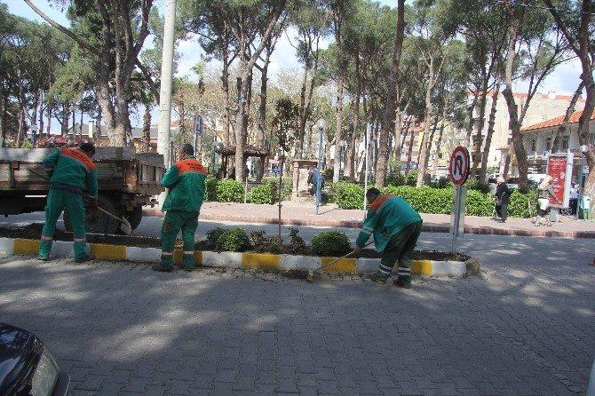 Kavşak Düzenlemesi Sebebiyle Ağaçlar Taşınıyor