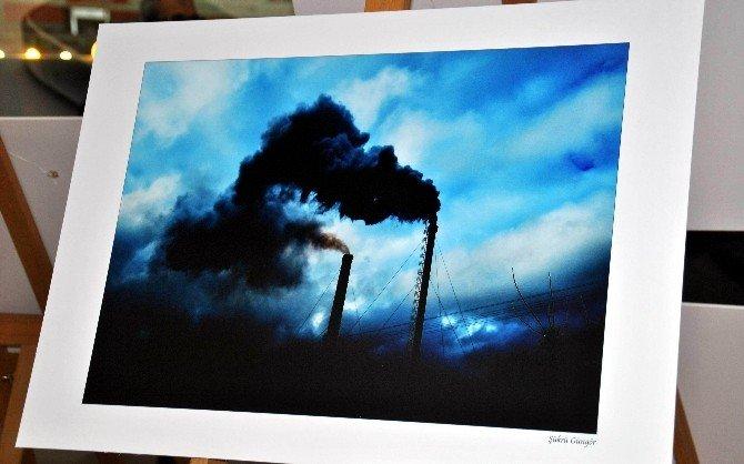 Aydın Tabip Odası 'Doğayı Da Yaşat' Adlı Fotoğraf Sergisi Açtı