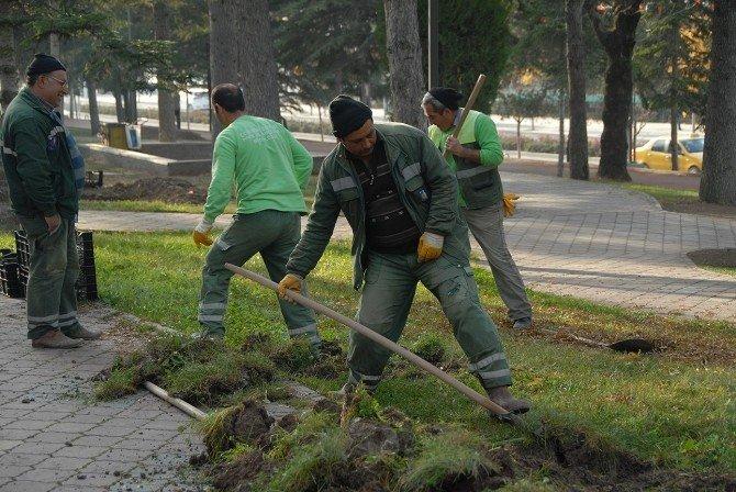 Çorum Belediyesi Parkları Bahara Hazırlıyor