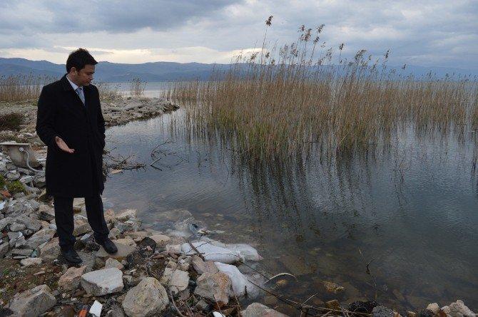 İznik Gölü'ndeki Kirlilik Meclis Gündeminde