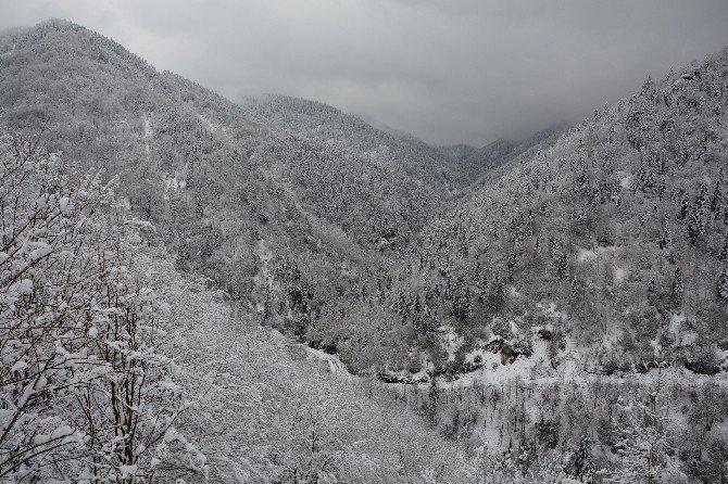 Kar Yağışı Sonrası Kartpostallık Görüntüler
