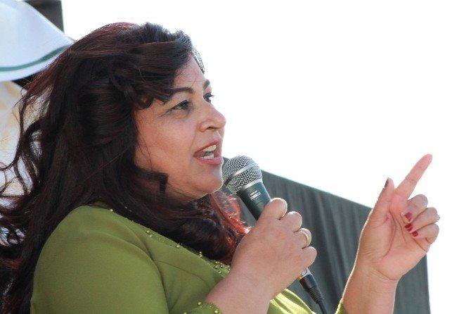 Kadın Girişimci Bakanlıktan Aldığı Yüzde 50 Hibe İle Zeytin Fabrikası Kurdu