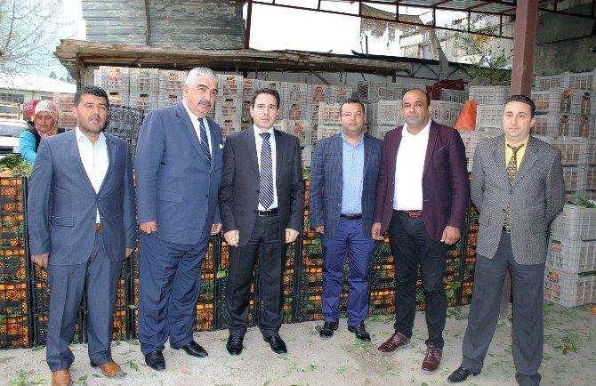 Adana'dan Güvenlik Güçlerine 25 Ton Portakal