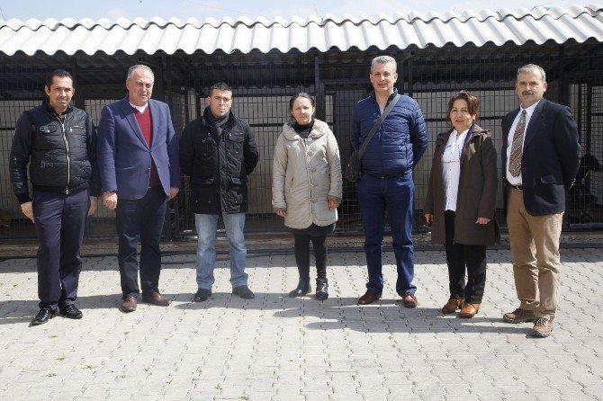 Odunpazarı'nın Kırsal Çalışmaları Türkiye'ye Örnek Oluyor