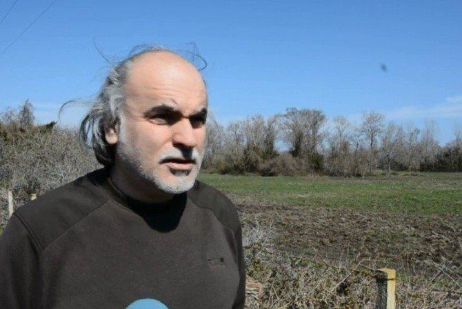 Kızılırmak Deltası'nda Turna Sesleri