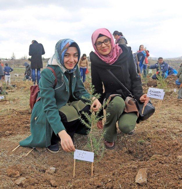 Talas'ta Şehitler Anısına Bin Fidan Toprakla Buluştu