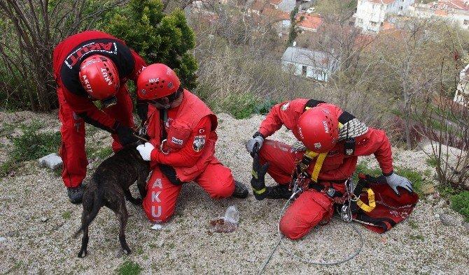 Uçurum Kenarına Düşen Köpeği AKUT Kurtardı
