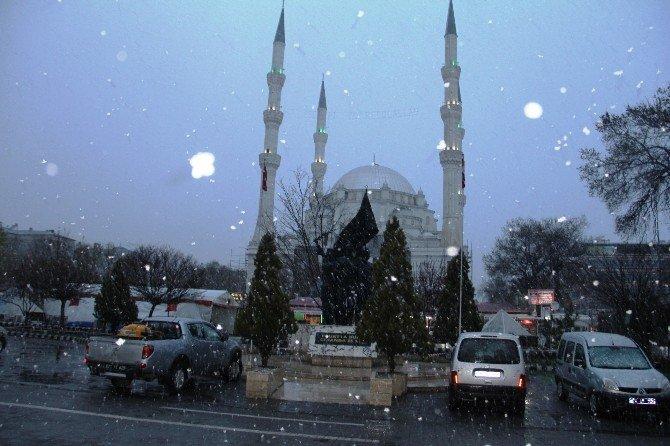 Iğdır'da Çiçek Açan Kayısı Ağaçlarına Kar Yağdı