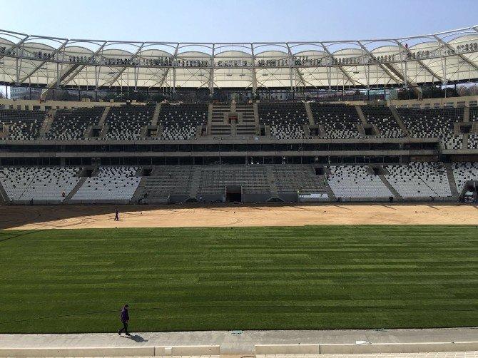 Vodafone Arena'da Çim Serme İşlemi Sürüyor