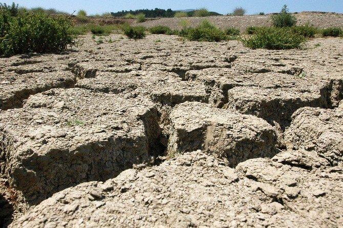 Türkiye'de Su Kaynakları Alarm Veriyor