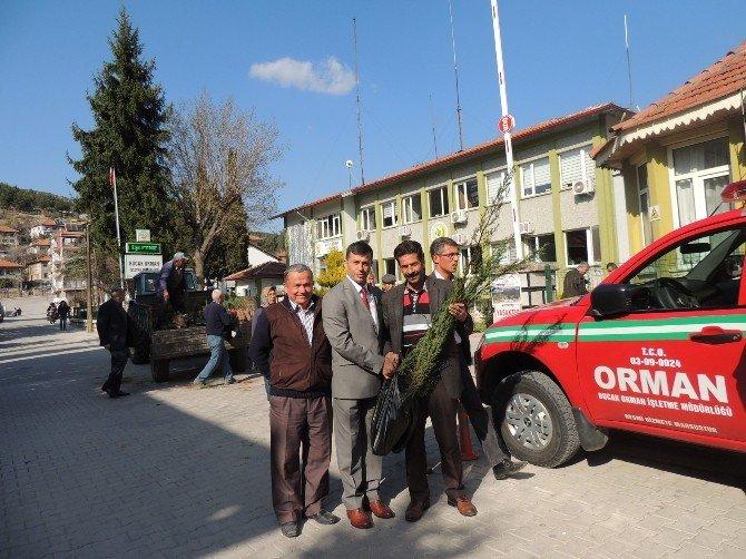 Bucak'ta 5 Bin Fidan Dağıtıldı