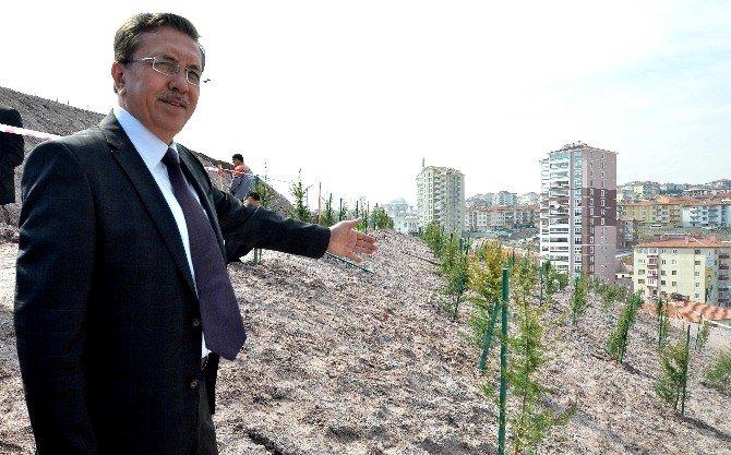 Pursaklar'da 2 Bin 500 Fidan Toprakla Buluştu
