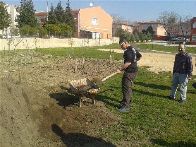 Engeliler Hobi Bahçesine Süs Ve Bahçe Bitkileri Ekti