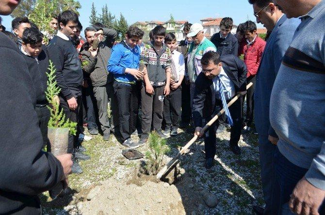 Dalyan'da Ormancılık Haftasında Fidanlar Toprakla Buluştu