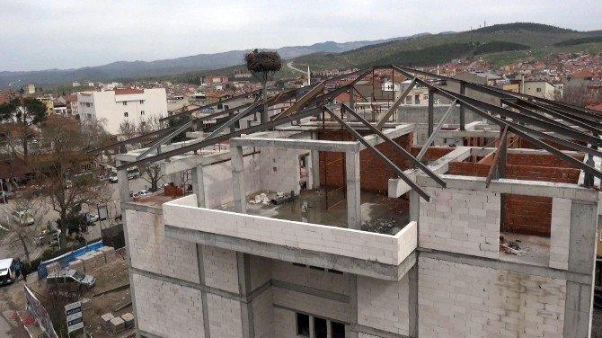 Leylekler Yeni Belediye Binasına Yerleşti