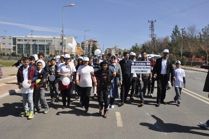 Siverek'te 'Sağlıklı Yaşam Yürüyüşü' Düzenlendi