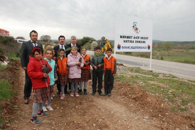 Mehmet Akif Ersoy Hatıra Ormanı Oluşturuldu