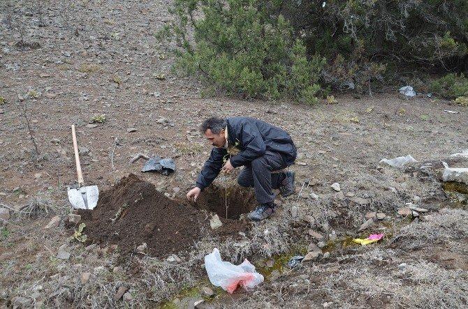 İnal Köyü'nde 3 Bin Fidan Toprakla Buluştu