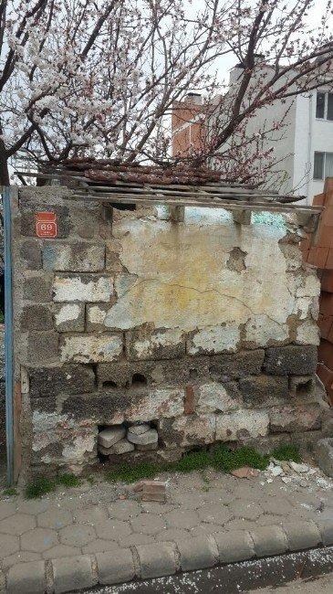 Metruk Binanın Duvarı Bonzai Zulası Çıktı