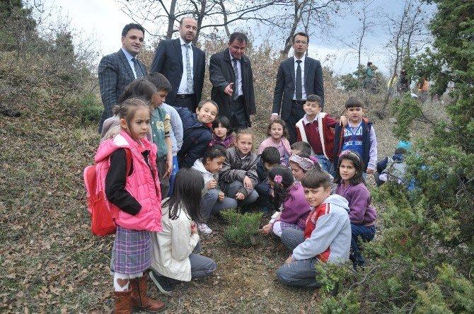 Kent Ormanı'na 900 Öğrenciden 900 Fidan