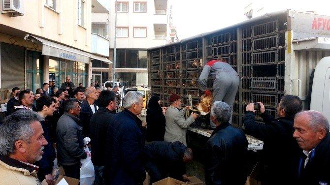 Giresunlu Çiftçilere 500 Adet Tavuk Dağıtıldı