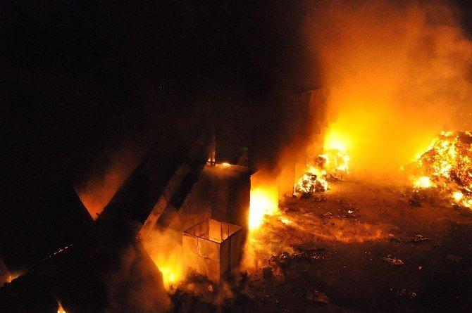 Kağıt Fabrikasında Çıkan Yangın Paniğe Neden Oldu