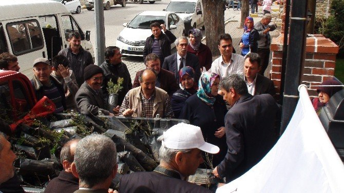 Gediz'de 2 Bin Adet Ağaç Fidanı Dağıtıldı