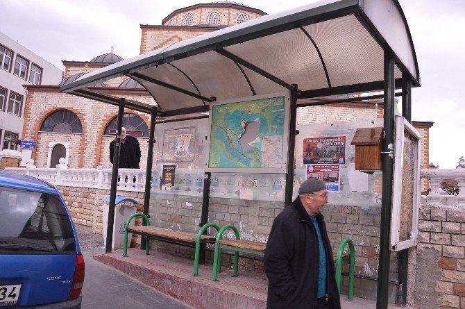 Niksar'da Şehir Magandaları İş Başında