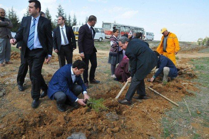 Akşehir'de Protokol Ve Öğrencilerden 850 Fidan