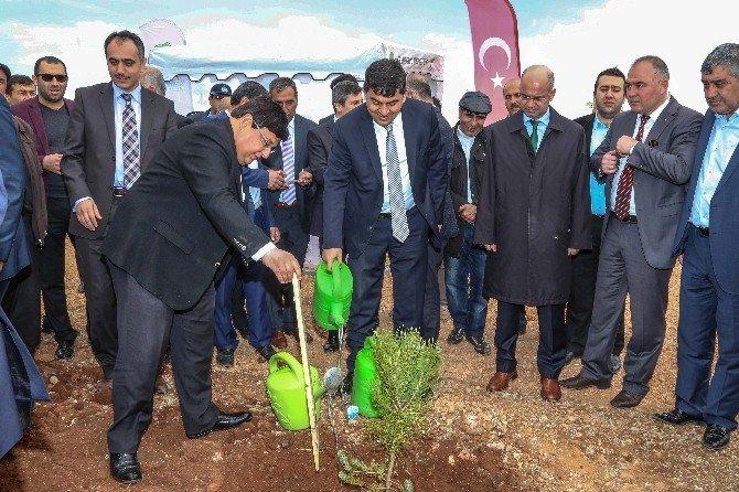 Şehitkamil Belediyesi Yeşile Doymuyor