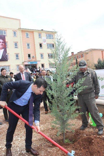 Ağaç Bayramında Fidanlar Toprakla Buluştu