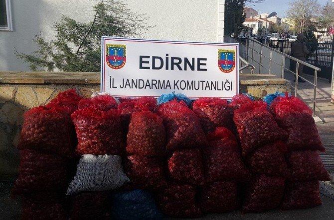 Midye Kaçakçıları Enez'i Geçemiyor