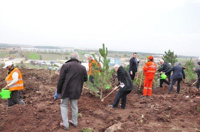 Kastamonu'da Ormancılık Haftası Kutlandı