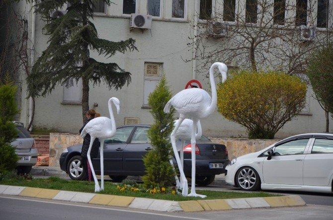 Babaeski'ye Flamingo Heykelleri Konuldu