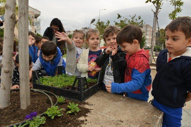Konyaaltı Belediyesi Kreşi'nin Minik Öğrencileri Çiçek Dikti