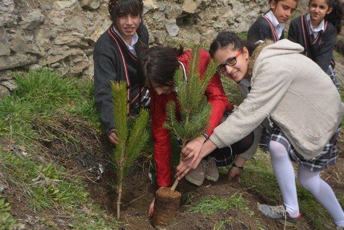 Okul Öğrencileri Çöplüğü Yeşil Alana Çevirdi
