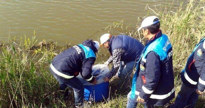 Aydın'da Su Ürünleri Denetimi Yapıldı