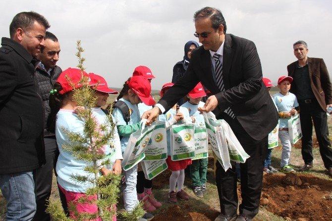 Bingöl'de Orman Haftası Kapsamında Fidan Dikimi Gerçekleştirildi