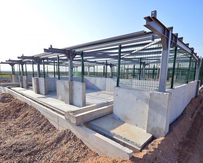 İzmir'de sokak hayvanlarına iki yeni yuva, 4 bin kapasiteli mezarlık