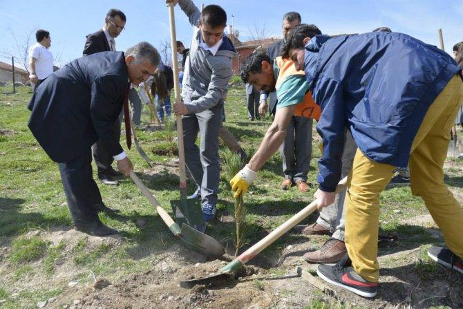 Melikgazi'de hedef 50 bin fidanı toprakla buluşturmak