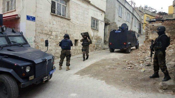 Siirt'te Büyük Operasyon: 10 Gözaltı