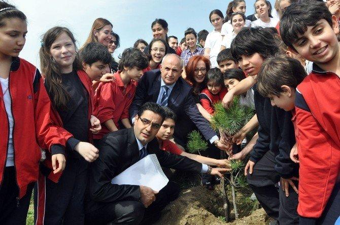 Önce Ağaç Dikecekler, Sonra Nikahları Kıyılacak